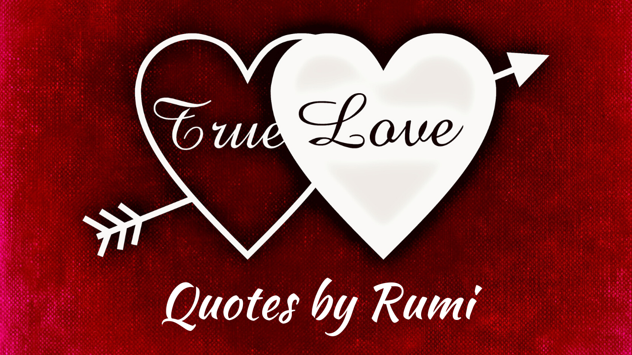 What Is True Love Quotes By Rumi