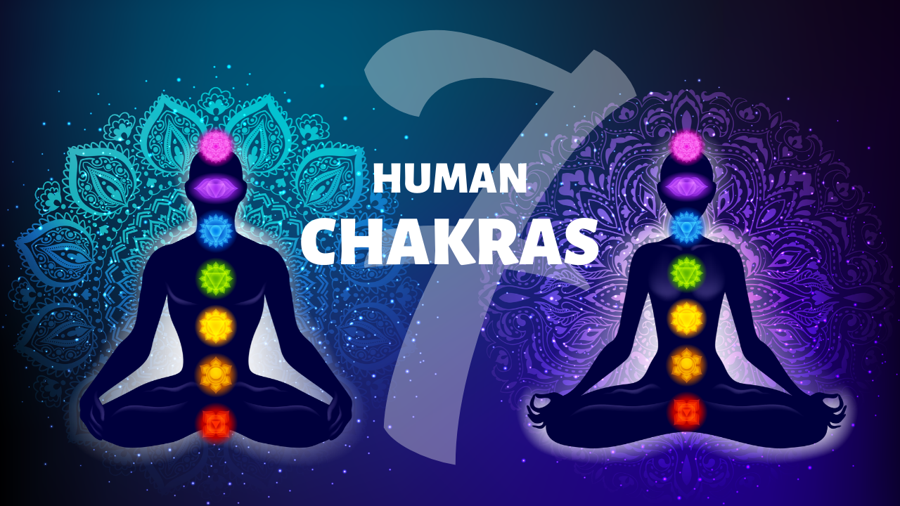 7 Human Body Chakras - Chakra Meaning, Function and Activation